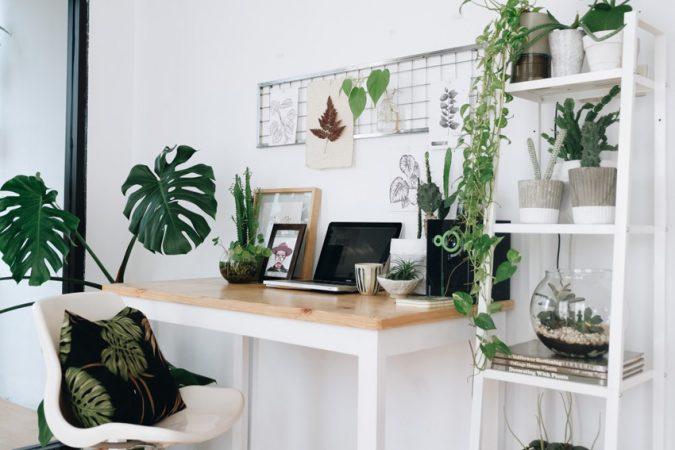 Selain berfungsi menjadi aksentuasi pada tampilan interior, kehadiran tanaman hias juga dapat memberikan sirkulasi udara yang sejuk dan menyegarkan.