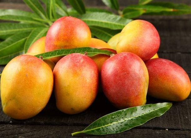 Mangga Apel