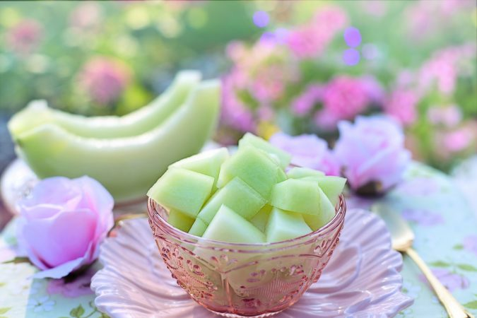 pembibitan buah melon