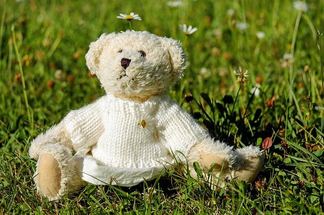 kartun teddy bear