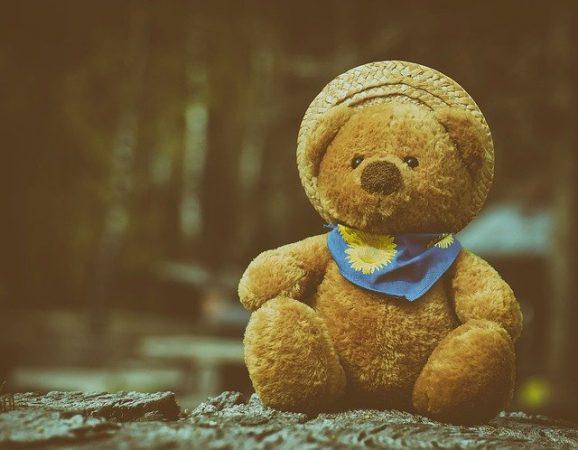 gambar kartun teddy bear yang comel